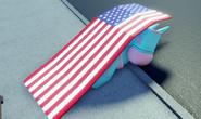 D4C hiding under flag dimension hop yes