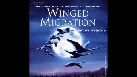 Beating_Drums_-_Winged_Migration_Soundtrack