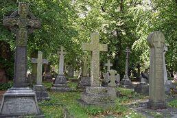 Graveyard island.jpg