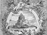 Old tree island