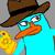 Perrytheplatypus4620