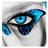 KN510's avatar
