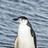 Eschiss1's avatar