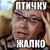 Gudimov
