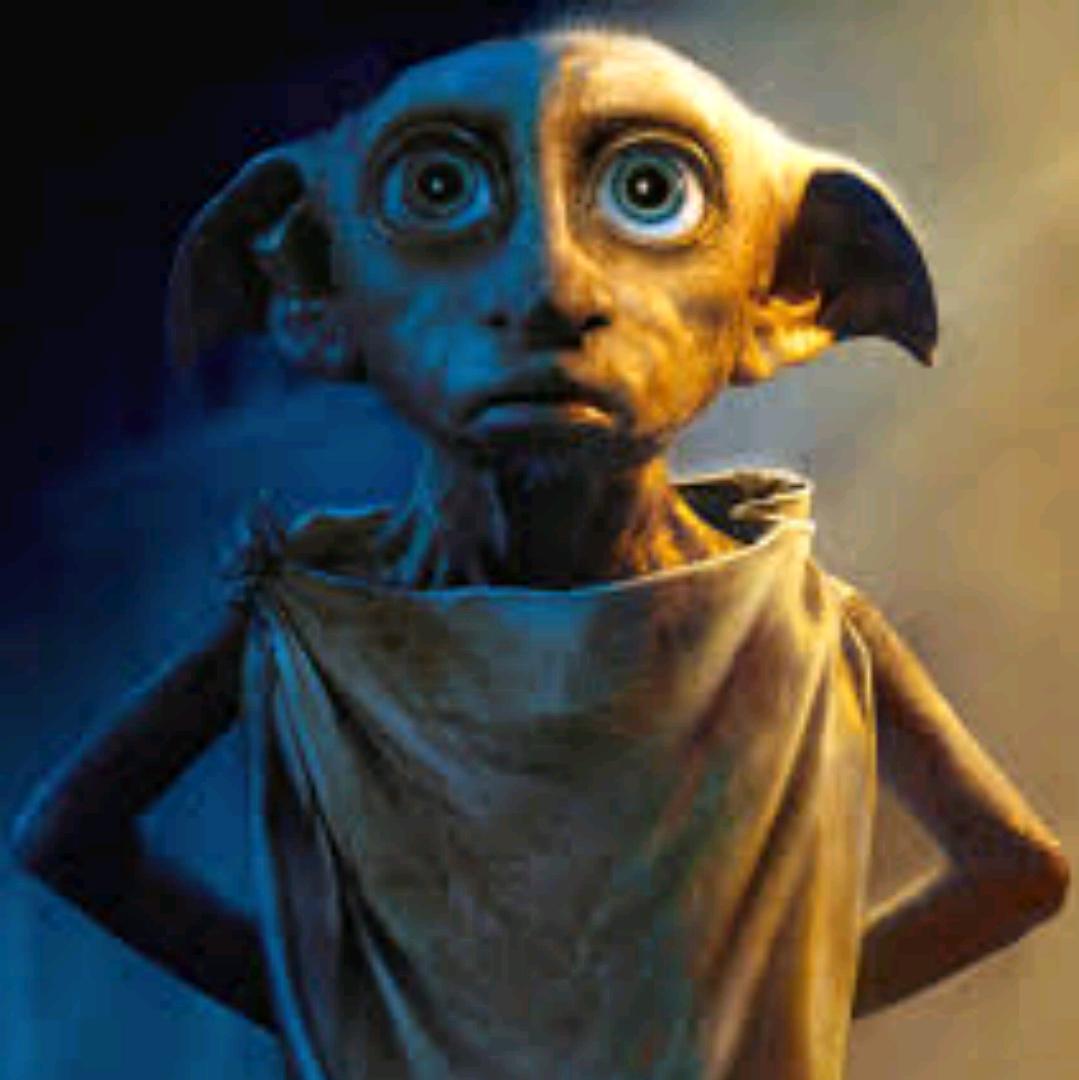Dobby ist ein freier elf