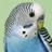 8rhepes's avatar