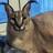 Inf3rnossAbyss's avatar