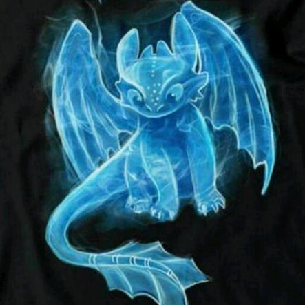 Dragon bug's avatar