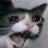 Miazmatic's avatar