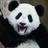 Monkey8814's avatar