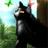 awatar użytkownika BluszczowyPazur1