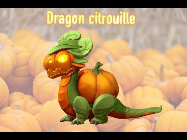 DRAGONS DE LA SEMAINE #1 DRAGON CITROUILLE 🎃
