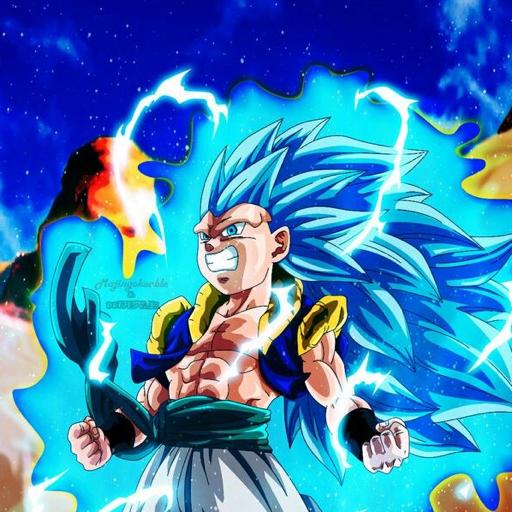 Fighter z budokkan's avatar