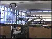 KC Interior
