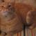 Kittymix92's avatar