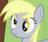 CourtneyTotalDrama9000's avatar