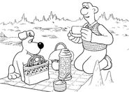 Wallace And Gromit Having Picnic