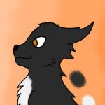 Tempête de Minuit's avatar