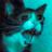 Whywerentyouatelfpr2's avatar