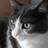 RaquelOliveira1's avatar