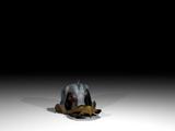Blotmare Disembodied