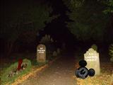 Treasure Island Graveyard