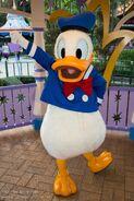 Donald Duck Suit
