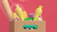 101a - Bozzly hiding in a box