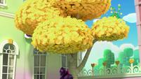 101b - Bozzly hiding upward in the tree
