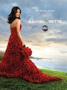 The Bachelorette poster s9