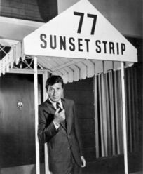 77 Sunset Strip .jpg