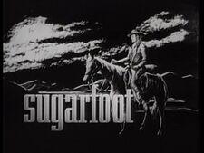 Sugarfoot .jpg