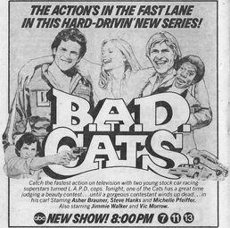 B.A.D. Cats .jpg