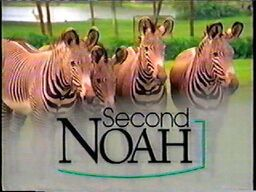 Second Noah .jpg