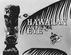 Hawaiian Eye .jpg
