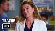 Grey's Anatomy Season 17 Teaser Promo