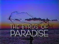 The Byrds of Paradise .png
