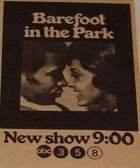 Barefoot in the Park .jpg