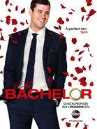 The Bachelor poster s20