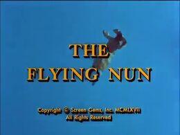 The Flying Nun .jpg