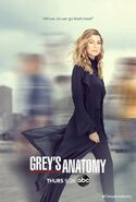 Grey's Anatomy season 16 poster