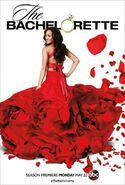 The Bachelorette poster s13
