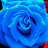 Аватар Starryl