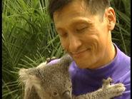 KoalaLaLa.jpg