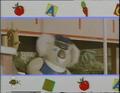 Koala1993-1994
