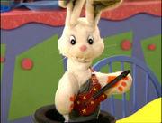 Carla the Rabbit