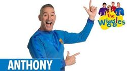 The Wiggles Meet Anthony!