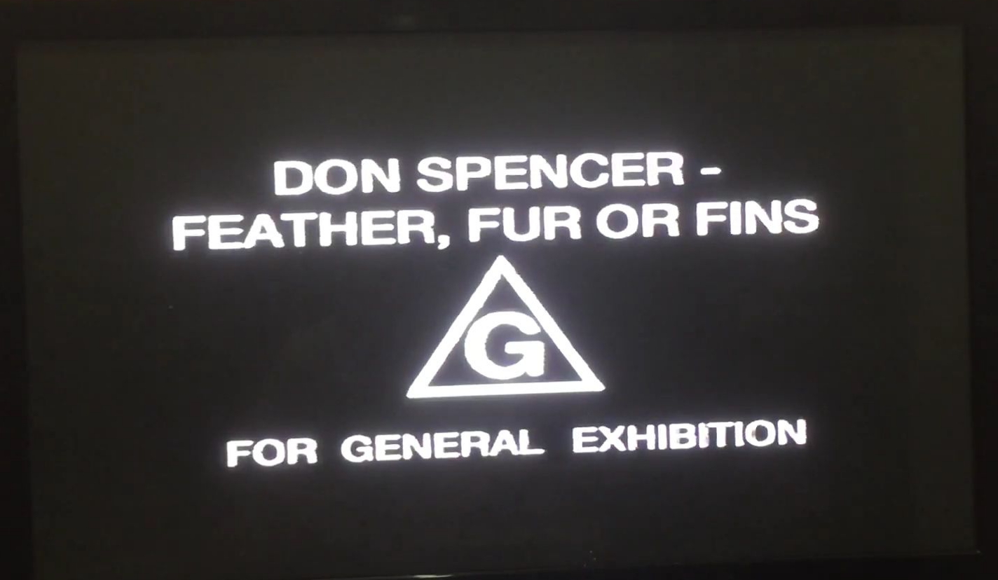 Don Spencer's Feathers, Fur or Fins/Gallery