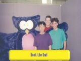 Hoot the Owl (The Wiggles)