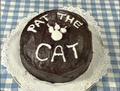 PattheCat72